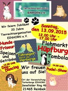 Einhorn Feier 2015